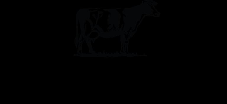 Wyre & Fylde logo new Feb 2020
